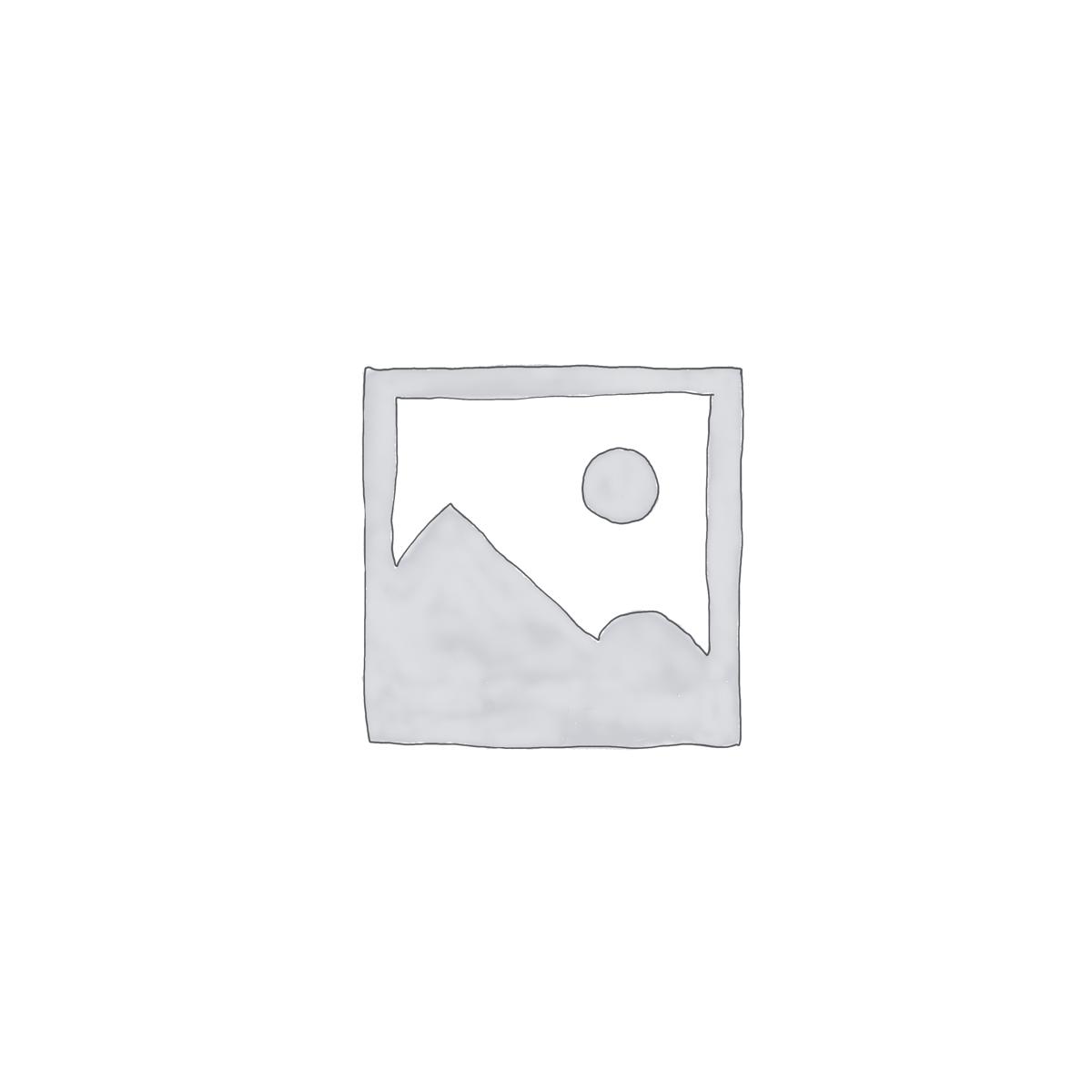 portes en verre pivotantes